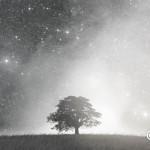 ヨガ哲学から学ぶ日常に大切なココロ【感謝の瞑想】