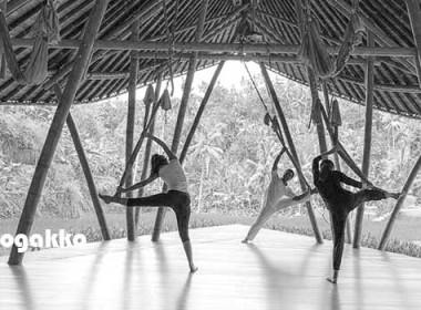 world_yoga