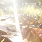 音楽と脳〜ヨガクラスでのプラスαな使い方